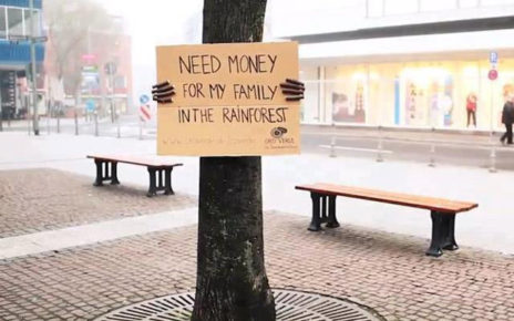 handwritten poster on tree donations for rainforest
