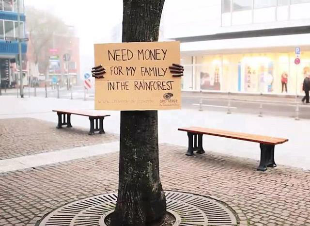 handwritten poster on tree donations for rainforest