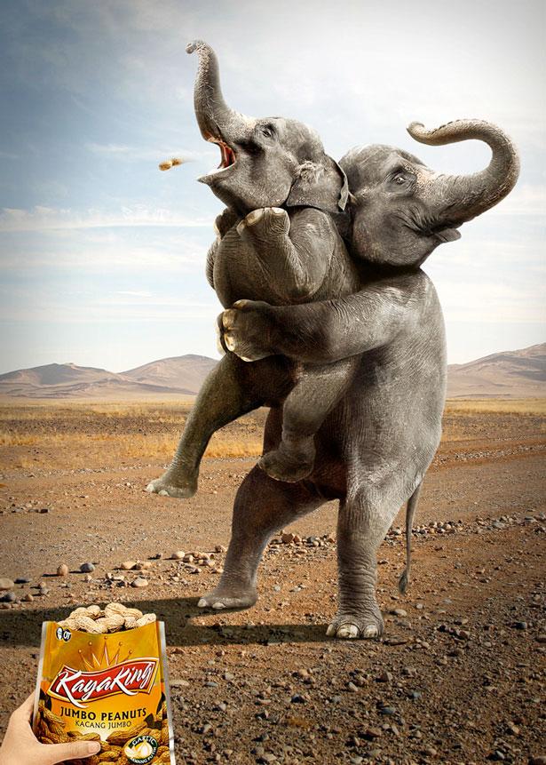 elephant chocking on giant peanuts kayaking