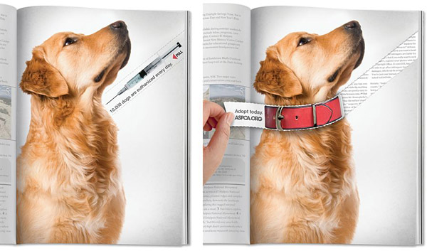 Save a Dog's Life - Magazine Tear Ad | ASPCA - THE BIG AD