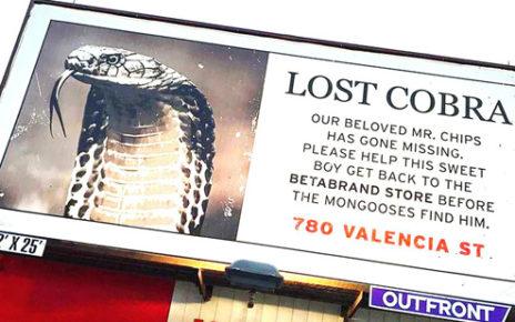 fake news billboard - lost cobra san francisco