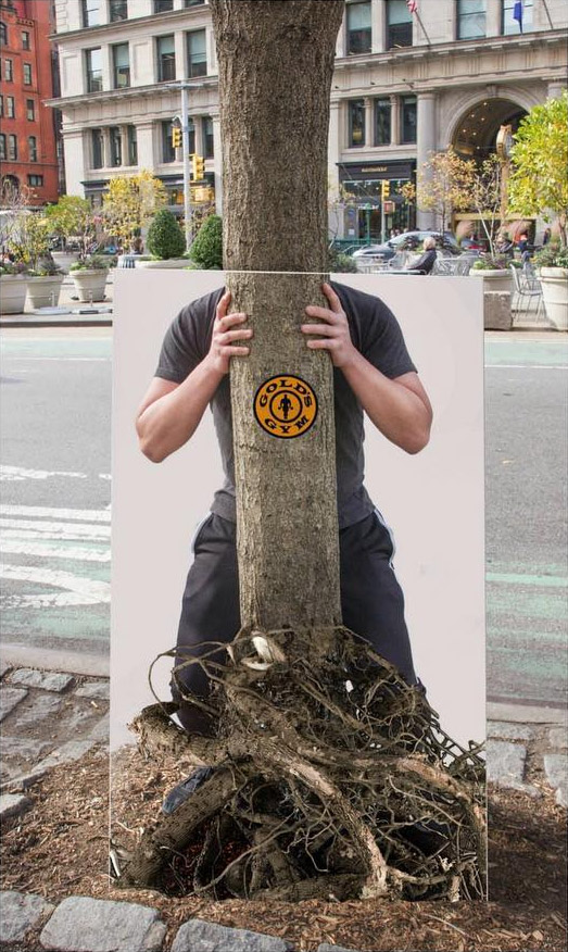muscle man uprooting tree poster golds gym