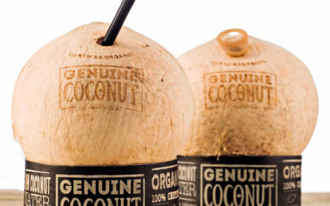 coconut water container that looks like a coconut shell