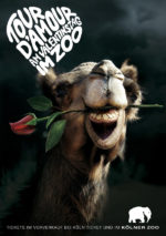 celebrate valentines at the zoo print ads camel