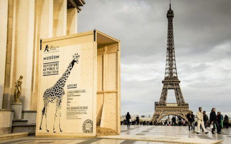 wild animal crates opened and dispersed around paris - zoo grand opening - giraffe