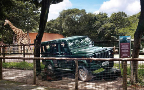 wild jeep exhibit at the zoo