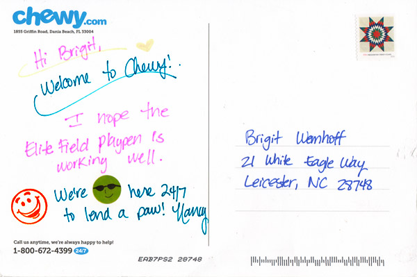 handwritten followup postcard - chewy