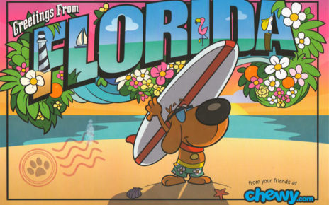sale followup postcard - cartoon fun