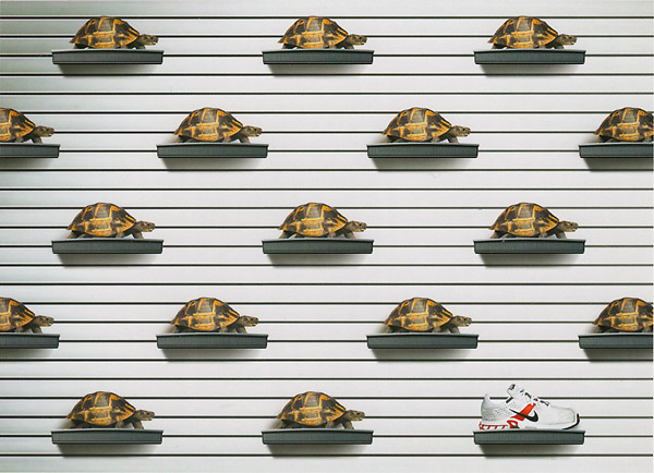 nike vs turtles wall display print advert