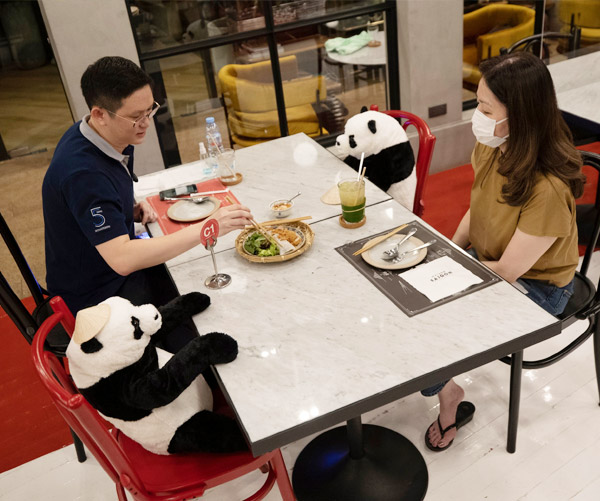 social distancing with panda dolls in thailand restaurant