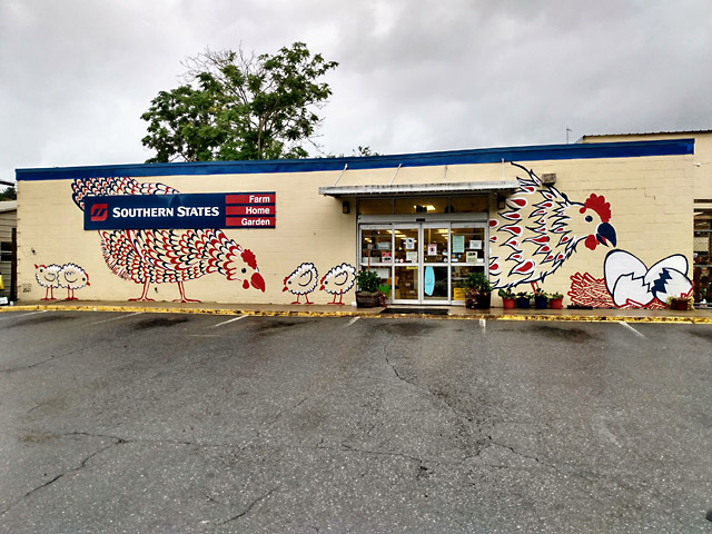 storefront mural chickens southern states asheville
